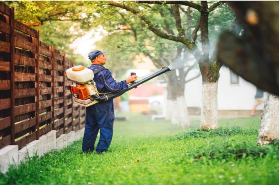 a man with complete suit spraying something to prevent pest