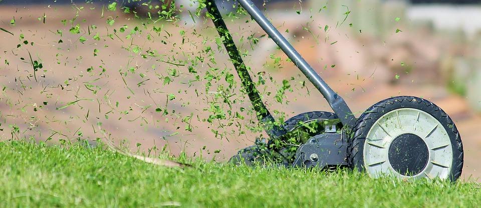 Lawn-Treatments