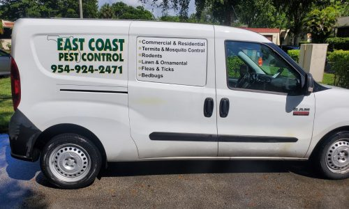 Residential Pest Control Fort Lauderdale Florida